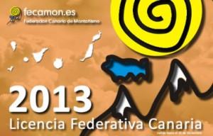 2013_licencia_tarjeta
